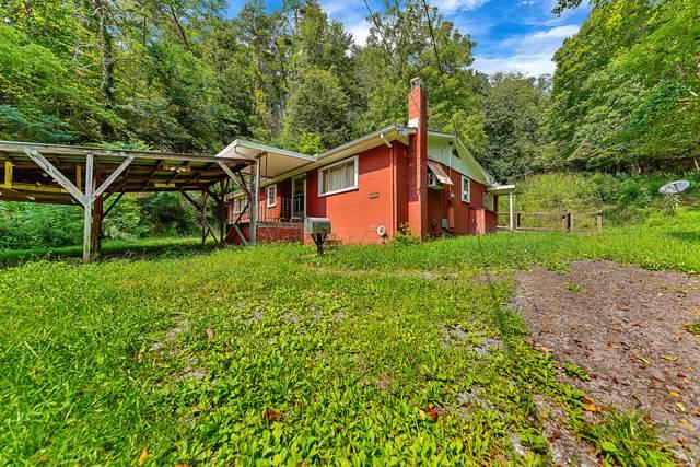 641 Pig Pen Hollow Rd, Townsend, TN 37882 (#1167931) :: JET Real Estate