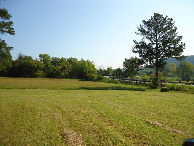 County Road 105, Athens, TN 37303 (#1167947) :: Catrina Foster Group