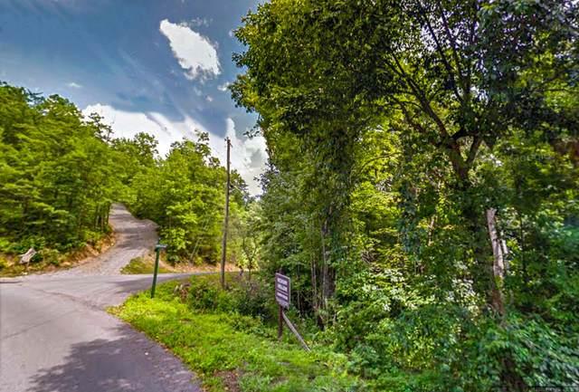 Heather Lane Way, Sevierville, TN 37862 (#1168044) :: Catrina Foster Group