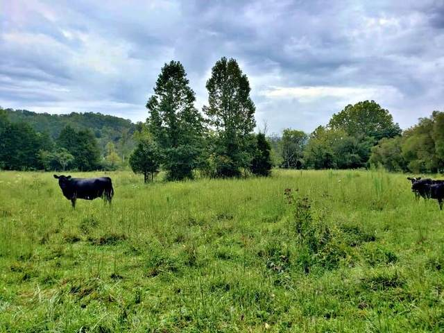 0 County Road 103, Athens, TN 37303 (#1168069) :: Catrina Foster Group
