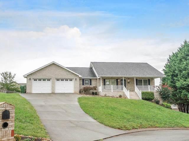520 Farmview Drive, Maryville, TN 37804 (#1168291) :: Billy Houston Group