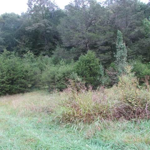 109 Cox Creek Lane, harrogate, TN 37752 (#1168295) :: A+ Team