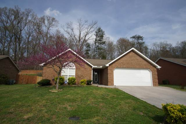 7036 Wrens Creek Lane, Knoxville, TN 37918 (#1168366) :: A+ Team