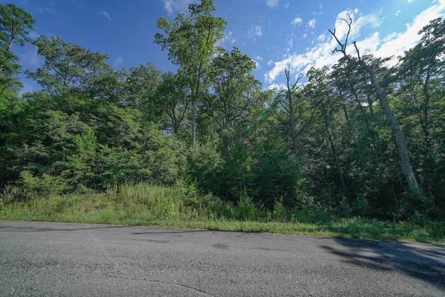 Lot 56 Mountain Ash Way, Sevierville, TN 37876 (MLS #1168372) :: Austin Sizemore Team