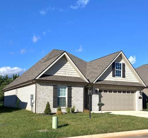 233 Sand Hills Drive, Maryville, TN 37801 (#1168407) :: Billy Houston Group