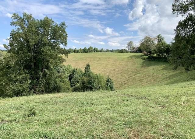 16145 Tucker Ridge Rd, Silver Point, TN 38582 (#1168478) :: Billy Houston Group