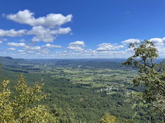Mt Clouds Tr, Duff, TN 37729 (#1168550) :: A+ Team