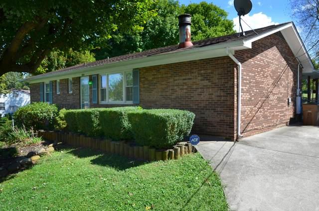 6034 Lilywood Lane, Knoxville, TN 37921 (#1168618) :: Cindy Kraus Group   Engel & Völkers Knoxville