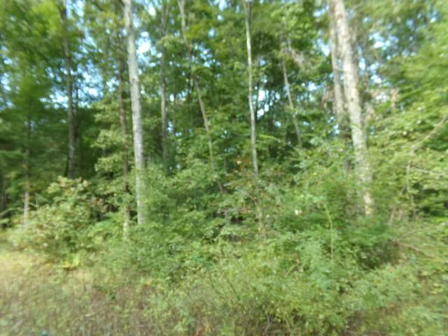 6012  6014 Keta Lane, Crossville, TN 38572 (#1168682) :: Shannon Foster Boline Group