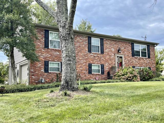 805 Crest Forest Rd, Knoxville, TN 37923 (#1168733) :: A+ Team