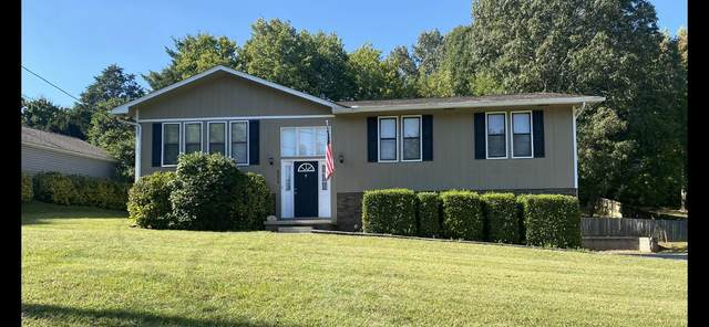 8209 Richland Colony Rd, Knoxville, TN 37923 (#1168859) :: A+ Team