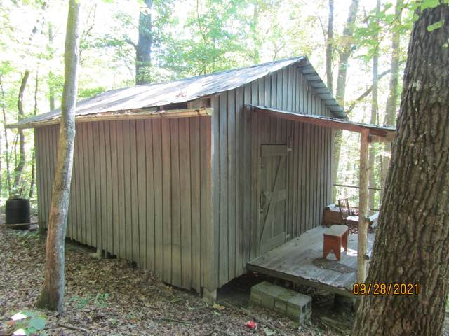 73.3 Acres Seal Chapel Rd-Off Rd, Tazewell, TN 37879 (#1168975) :: Tennessee Elite Realty