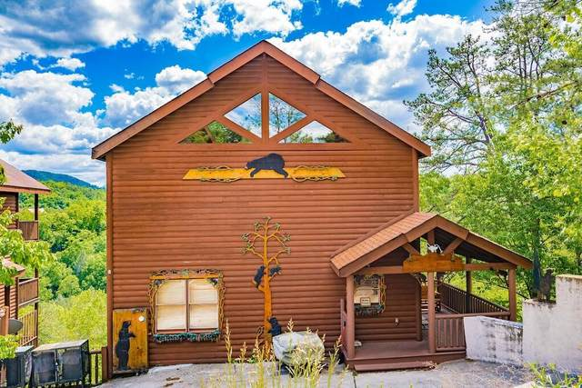 2012 Delta Dawn Drive, Sevierville, TN 37862 (#1169025) :: Collins Family Homes | Keller Williams Smoky Mountains