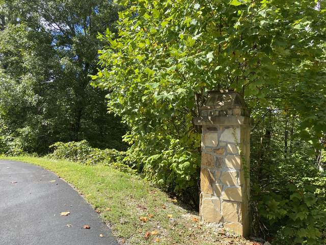 Long Rifle, Lot 119 Rd, Sevierville, TN 37862 (#1169069) :: The Terrell-Drager Team