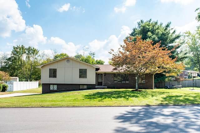 5675 Chestnut Oak Drive, Morristown, TN 37814 (#1169114) :: Cindy Kraus Group | Engel & Völkers Knoxville