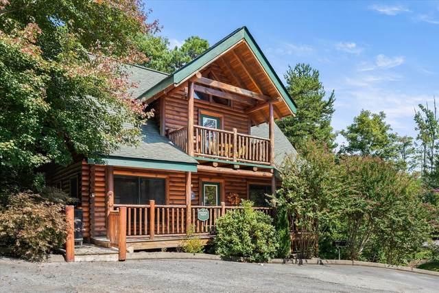 1659 Mountain Lodge Way, Sevierville, TN 37862 (#1169174) :: Collins Family Homes | Keller Williams Smoky Mountains