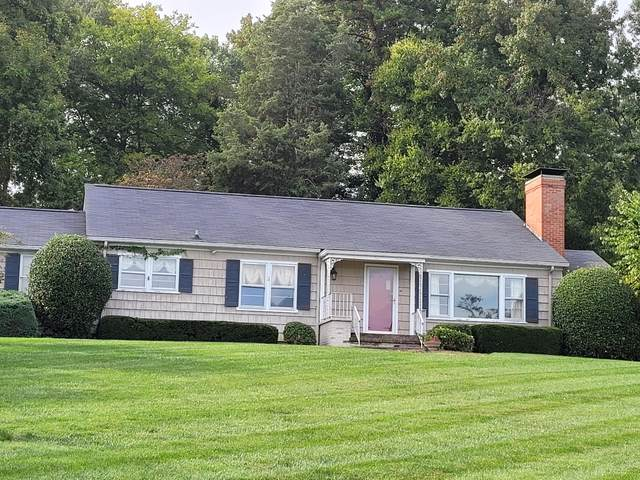 1603 Cherokee Blvd, Knoxville, TN 37919 (#1169235) :: Realty Executives Associates