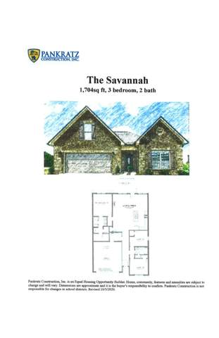 206 Sand Hills Drive, Maryville, TN 37801 (#1169535) :: The Cook Team