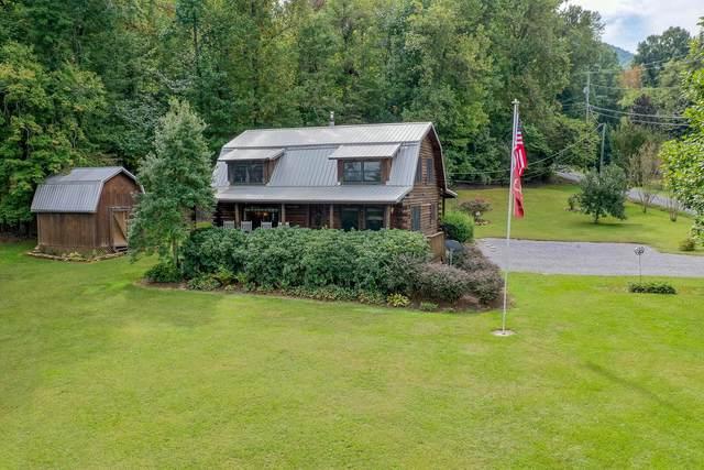 3509 Ginseng Way, Sevierville, TN 37862 (#1169554) :: Cindy Kraus Group | Engel & Völkers Knoxville