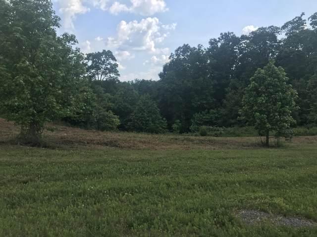 W Mountain Drive, Rockwood, TN 37854 (#1169821) :: Cindy Kraus Group | Engel & Völkers Knoxville