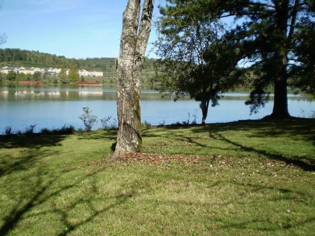 8005 River Drive, Oak Ridge, TN 37830 (#1170090) :: Adam Wilson Realty