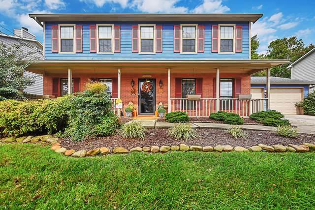 1005 Harbour Shore Drive, Knoxville, TN 37934 (#1170105) :: Cindy Kraus Group | Engel & Völkers Knoxville
