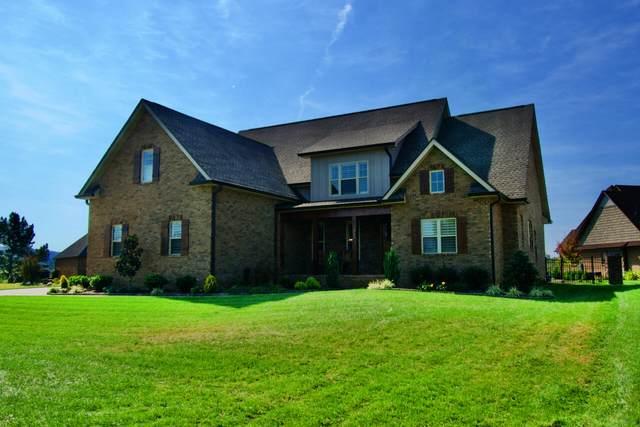 212 Wheatgrass Point Drive, Maryville, TN 37804 (#1170213) :: A+ Team