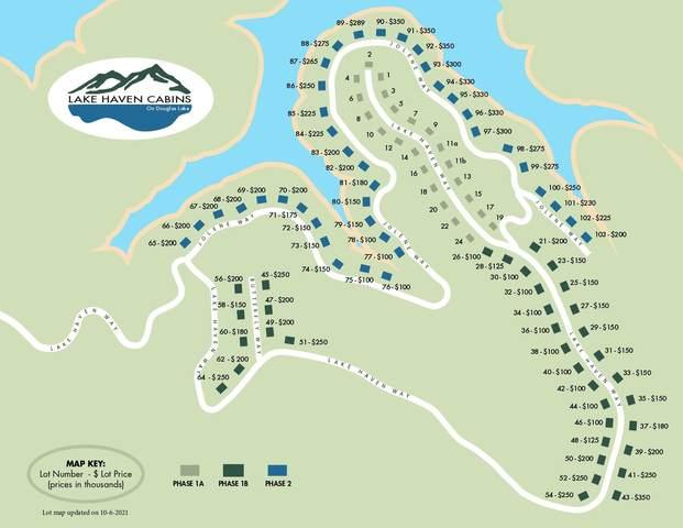 Lake Haven Way, Sevierville, TN 37876 (#1170271) :: Cindy Kraus Group | Engel & Völkers Knoxville
