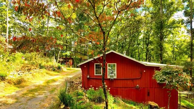 6240 Happy Valley Loop, Tallassee, TN 37878 (#1170288) :: Cindy Kraus Group | Engel & Völkers Knoxville