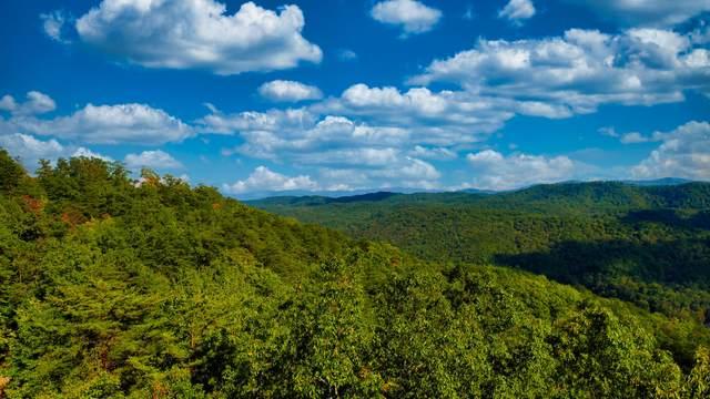 550 Steer Creek Rd Rd, Tellico Plains, TN 37385 (#1170359) :: Tennessee Elite Realty