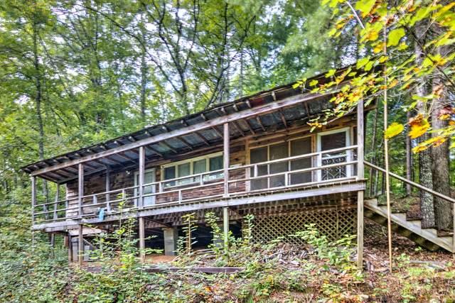 6238 Happy Valley Loop, Tallassee, TN 37878 (#1170370) :: Cindy Kraus Group | Engel & Völkers Knoxville