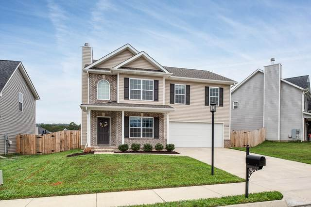7543 Dupree Road, Knoxville, TN 37920 (#1170476) :: Cindy Kraus Group | Engel & Völkers Knoxville