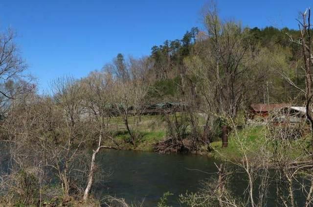 01 Cherohala Skyway, Tellico Plains, TN 37385 (#1170485) :: Tennessee Elite Realty