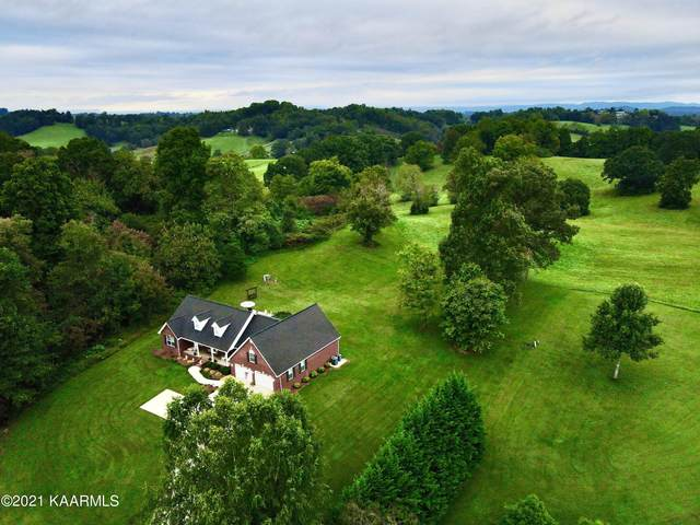 186 Grace Drive, New Tazewell, TN 37825 (#1170584) :: Tennessee Elite Realty