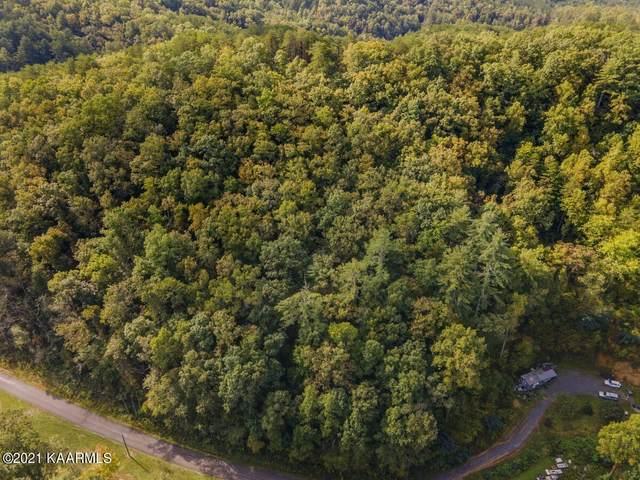 Smokey Branch Rd, Vonore, TN 37885 (#1170588) :: Tennessee Elite Realty
