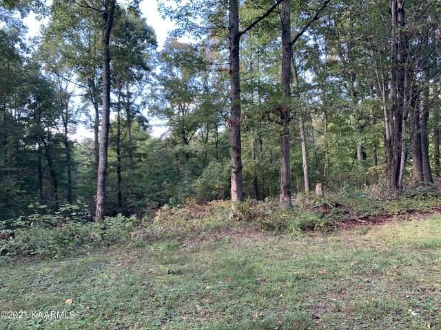 324 Chestnut Ridge Rd Rd, Kingston, TN 37763 (#1170755) :: Tennessee Elite Realty