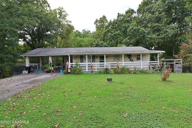 301 Grape Rough Rd, Oneida, TN 37841 (#1170896) :: Tennessee Elite Realty