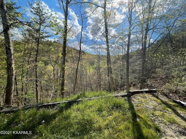 Hatcher Mtn Rd, Sevierville, TN 37862 (#1170921) :: Cindy Kraus Group | Engel & Völkers Knoxville