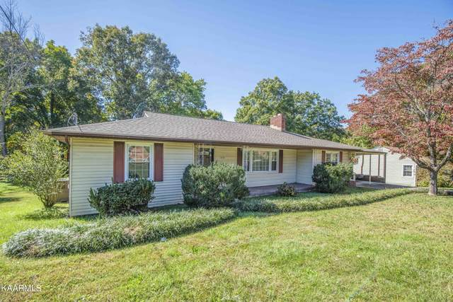 5725 Kentwood Rd, Knoxville, TN 37912 (#1170981) :: JET Real Estate