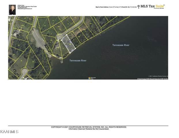Lot 5, Docks Of The Bay Drive, Harriman, TN 37748 (#1171056) :: A+ Team