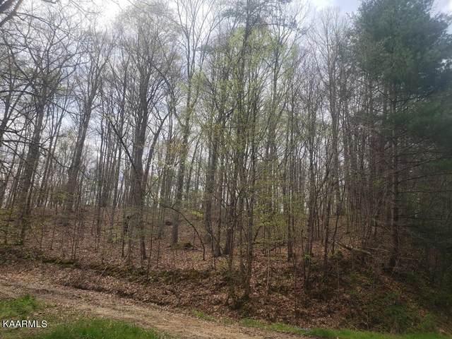 Buffalo Rd, Oneida, TN 37841 (#1171058) :: Tennessee Elite Realty