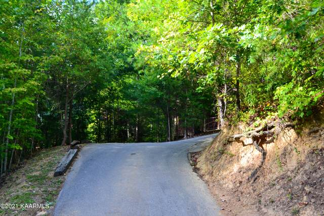 2920 Raven Fork Circle, Sevierville, TN 37876 (#1171065) :: Collins Family Homes | Keller Williams Smoky Mountains