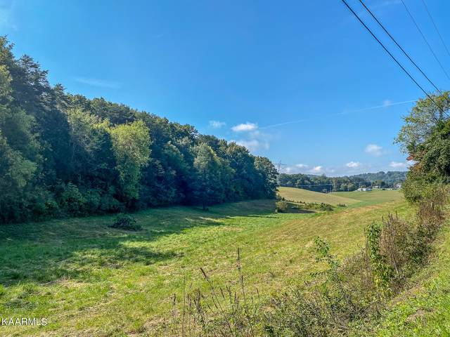 137 Old James Ferry Rd Tract 1, Kingston, TN 37763 (#1171076) :: A+ Team