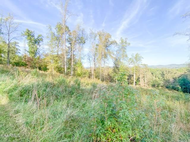 344 Eagle Ridge Drive, Rockwood, TN 37854 (#1171175) :: Billy Houston Group