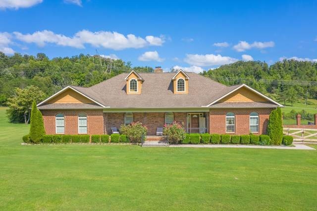 405 E Brushy Valley Drive, Powell, TN 37849 (#1171186) :: Shannon Foster Boline Group