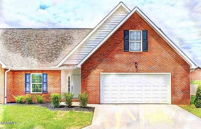 7340 Willow Path Lane, Knoxville, TN 37918 (#1171189) :: A+ Team