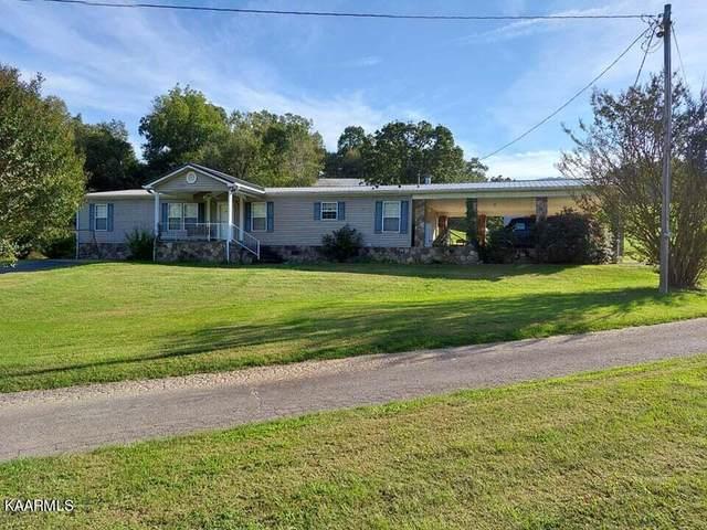 1055 Gunter Corner Rd, Parrottsville, TN 37843 (#1171195) :: Billy Houston Group