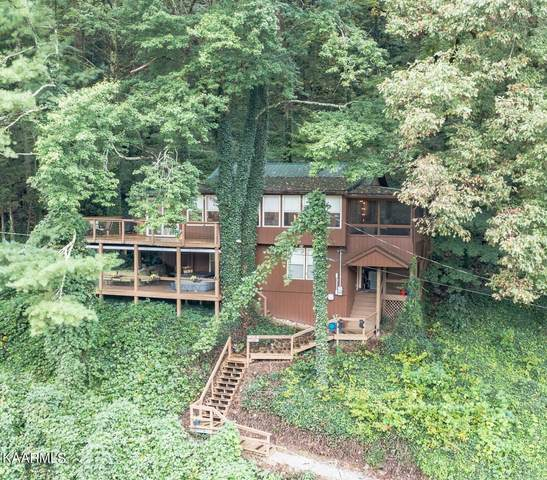 103 Long Branch Rd, Townsend, TN 37882 (#1171211) :: Collins Family Homes | Keller Williams Smoky Mountains
