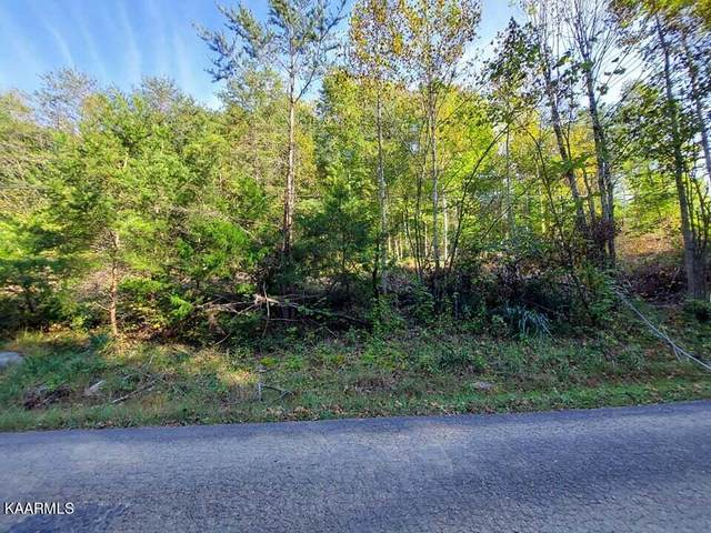 19 Acres Gunter Corner Rd, Parrottsville, TN 37843 (#1171213) :: Collins Family Homes | Keller Williams Smoky Mountains