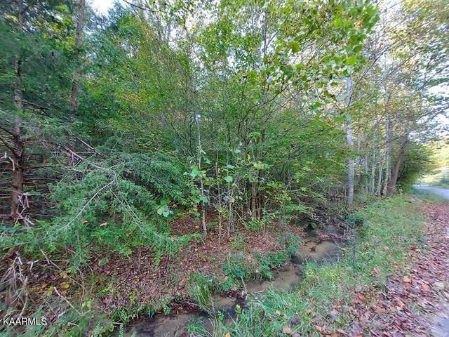 30 Acres Gunter Corner Rd, Parrottsville, TN 37843 (#1171214) :: Collins Family Homes | Keller Williams Smoky Mountains